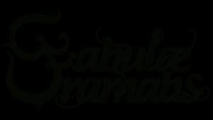 FD_Logo_B